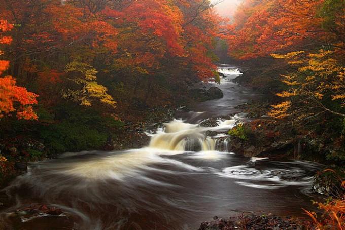 한반도의-가을-아름다운-제주도-한라산의-가을-풍경.jpg