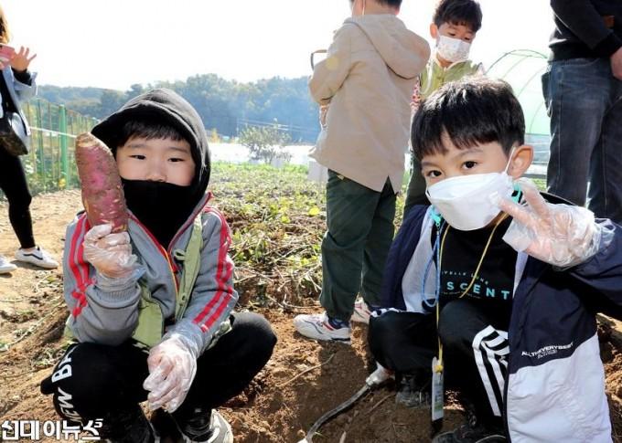 20201023[금천포토]아이들과 함께하는 고구마캐기 체험 행사(사진4)444.jpg