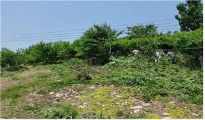 쌍용양회 동해공장, 삼화동 일대 환경정비 실시