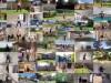 뮤지컬 '캣츠' 40주년 내한공연, 전 세계 333명 젤리클 고양이 참여한 영상 화제