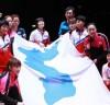 [청로 이용웅 칼럼]깃발·한반도기(韓半島旗)·태극기(太極旗)·인공기(人共旗)