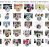 디바이드그룹, 팔로우 210만 명 베트남 화장품 판매 시장 견인
