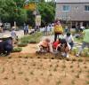 고양시 원당 도시재생 주민협의체, '배다리 마루 뜰 마을정원 식재행사' 개최
